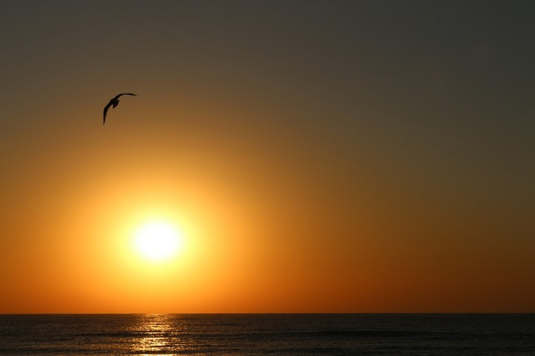 sunrise-3039043_960_720